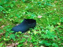 Rubber is garbage in the forest in summer Royalty Free Stock Image