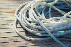 Rubber garden hose Royalty Free Stock Images