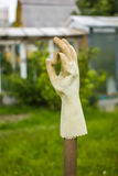 Rubber glove drying on palkt and showing thumbs up sign ok Stock Images