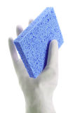 Rubber Glove Holding Sponge Royalty Free Stock Images