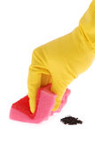 Rubber Glove and red Sponge Stock Photography