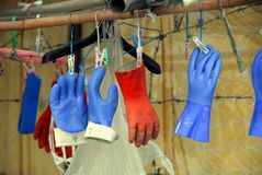 Rubber gloves drying Royalty Free Stock Photography