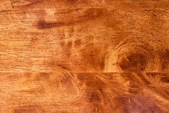 Hevea wood texture. Royalty Free Stock Photos