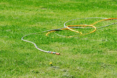 Rubber hose and green grass. Photo of Rubber hose and green grass royalty free stock photo