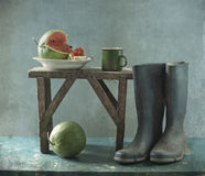 Rubber knee-boots and water-melon Royalty Free Stock Photos