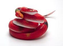 Rubber orm på en vit bakgrund/en rubber orm Fotografering för Bildbyråer