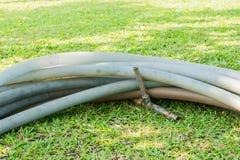 Rubber rör med vattenkranen på grönt fält Arkivfoton