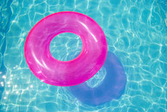 Rubber ring in the swimming pool. Sunny day stock image