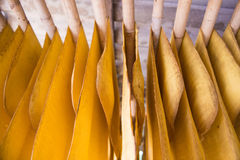 The rubber sheet are hanged on the bamboo hanger Royalty Free Stock Photography