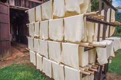 Rubber sheet production, process to baking with solar energy. Stock Photos