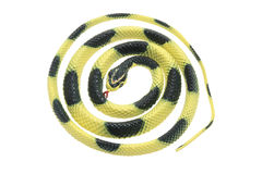 Rubber Snake Royalty Free Stock Images