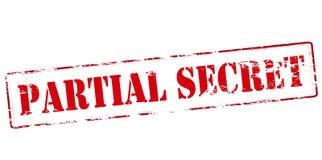 Partial secret. Rubber stamp with text partial secret inside,  illustration Stock Image