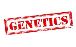 Genetics. Rubber stamp with word genetics inside,  illustration Royalty Free Stock Photo