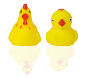 Rubber toy duck and chicken on white background Royalty Free Stock Photos