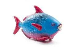 Rubber toy fish Royalty Free Stock Image