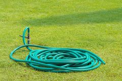 Rubber tube on grass in the garden stock photo