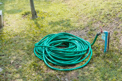 Rubber tube for watering plants in the garden. Royalty Free Stock Images