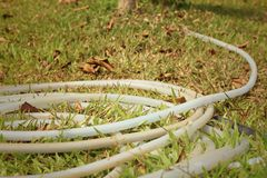 Rubber tube for watering plants on green grass. Royalty Free Stock Images