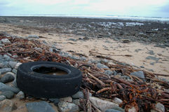 Rubber tyre polluting beach Royalty Free Stock Photography