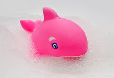 Rubber whale toy Royalty Free Stock Photo