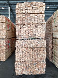 Rubber wood. Stacked of rubber wood in warehouse for construction buildings and furniture production,timber industry for import export Stock Photos