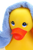 Rubber yellow duck Royalty Free Stock Photography