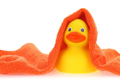 Rubber yellow duck Stock Photography