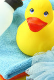 Rubber yellow duck Stock Image