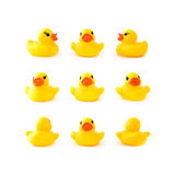 Rubber yellow ducks Royalty Free Stock Photo