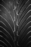 Rubberbandloopvlak Royalty-vrije Stock Afbeeldingen