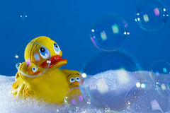 Rubberduck Royalty Free Stock Image