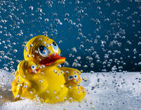 Rubberduck. Family in a bathtub with foam and drops Stock Photo