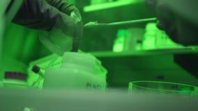 Rubberhandschoenen om chemische experimenten en geen contact met substanties te leiden stock footage