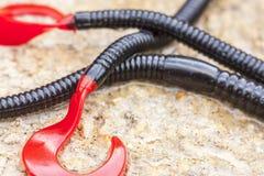 Rubberwormen Stock Afbeelding