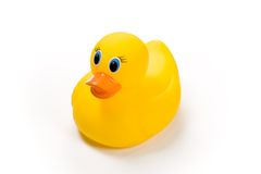 Rubbery Ducky. Yellow bath toy, rubber ducky isolated against white background Royalty Free Stock Photos