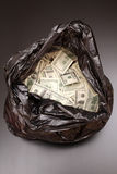 Rubbish bag with dollars Stock Photos