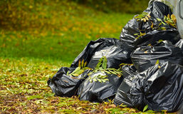Rubbish bags in autumn park, environment Royalty Free Stock Photos