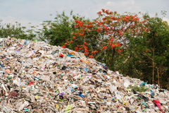 Rubbish dump. Uncontrolled disposal site in the nature Royalty Free Stock Photo