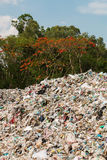 Rubbish dump. Uncontrolled disposal site in the nature Royalty Free Stock Images