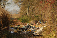 Rubbish in forest. Rubbish dump in forest, concept environment protection Stock Images