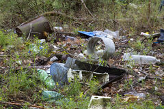 Rubbish in the forest Stock Image