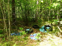 Rubbish in forest, Lithuania Royalty Free Stock Photo