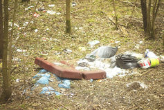 Rubbish in a forest Royalty Free Stock Image