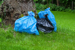 Rubbish sacks on grass. Three stuffed rubbish sacks lying on the grass Stock Image