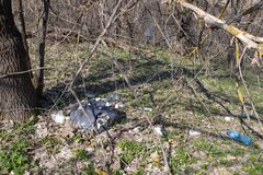 Rubbish scattered in the forest. Bottles, cans and other rubbish scattered in the forest stock images