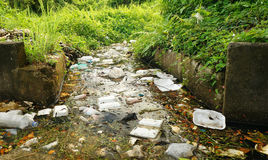 Rubbish wastes on the drain. Rubbish wastes on the dead drain Royalty Free Stock Photos