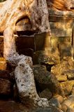 Rubble roots. The natural environment growing over the rublbe of angkor wat siem reap Royalty Free Stock Photos