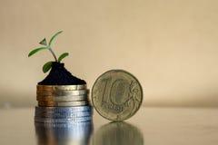 10 Rubel Münzen Russisches Geldkonzept - Münzen im Boden mit Jungpflanze Stockbild