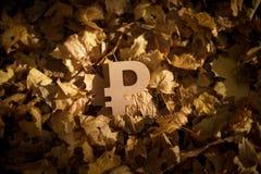 Rubelvalutasymbol på Autumn Leaves i sol för sen afton arkivbild
