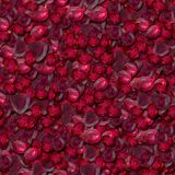 Rubies. Seamless Texture Tile Background Royalty Free Stock Photo